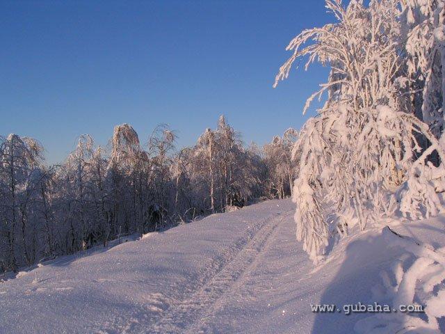 Губаха glc_gubaha_41.jpg Декабрь 2008 Горнолыжный центр Губаха горные лыжи сноуборд Город Губаха Фото