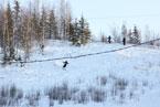 Губаха | gubaha 2011 2012 0135.jpg | ГЛЦ Губаха - сезон 2011-2012 | Горнолыжный центр Губаха горные лыжи сноуборд Город Губаха Фото