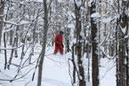Губаха | gubaha 2011 2012 0334.jpg | ГЛЦ Губаха - сезон 2011-2012 | Горнолыжный центр Губаха горные лыжи сноуборд Город Губаха Фото