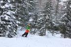 Губаха | gubaha 2011 2012 0351.jpg | ГЛЦ Губаха - сезон 2011-2012 | Горнолыжный центр Губаха горные лыжи сноуборд Город Губаха Фото