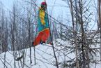 Губаха | gubaha 2011 2012 0401.jpg | ГЛЦ Губаха - сезон 2011-2012 | Горнолыжный центр Губаха горные лыжи сноуборд Город Губаха Фото