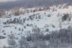 Губаха | gubaha 2011 2012 0449.jpg | ГЛЦ Губаха - сезон 2011-2012 | Горнолыжный центр Губаха горные лыжи сноуборд Город Губаха Фото
