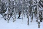 Губаха | gubaha 2011 2012 0467.jpg | ГЛЦ Губаха - сезон 2011-2012 | Горнолыжный центр Губаха горные лыжи сноуборд Город Губаха Фото