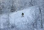 Губаха | gubaha 2011 2012 0492.jpg | ГЛЦ Губаха - сезон 2011-2012 | Горнолыжный центр Губаха горные лыжи сноуборд Город Губаха Фото
