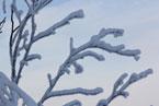 Губаха | gubaha 2011 2012 0503.jpg | ГЛЦ Губаха - сезон 2011-2012 | Горнолыжный центр Губаха горные лыжи сноуборд Город Губаха Фото