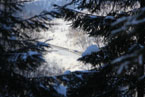 Губаха | gubaha 2011 2012 0566.jpg | ГЛЦ Губаха - сезон 2011-2012 | Горнолыжный центр Губаха горные лыжи сноуборд Город Губаха Фото