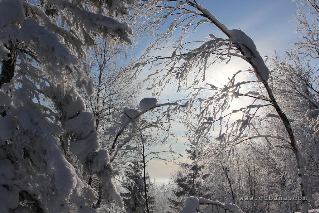 Губаха gubakha_2012_2013_1184.jpg ГЛЦ Губаха - сезон 2012-2013 Горнолыжный центр Губаха горные лыжи сноуборд Город Губаха Фото