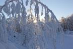 Губаха | gubakha 2012 2013 0159.jpg | ГЛЦ Губаха - сезон 2012-2013 | Горнолыжный центр Губаха горные лыжи сноуборд Город Губаха Фото