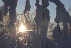 Губаха | gubakha 2012 2013 0160.jpg | ГЛЦ Губаха - сезон 2012-2013 | Горнолыжный центр Губаха горные лыжи сноуборд Город Губаха Фото