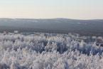 Губаха | gubakha 2012 2013 0169.jpg | ГЛЦ Губаха - сезон 2012-2013 | Горнолыжный центр Губаха горные лыжи сноуборд Город Губаха Фото
