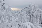 Губаха | gubakha 2012 2013 0198.jpg | ГЛЦ Губаха - сезон 2012-2013 | Горнолыжный центр Губаха горные лыжи сноуборд Город Губаха Фото