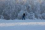 Губаха | gubakha 2012 2013 0379.jpg | ГЛЦ Губаха - сезон 2012-2013 | Горнолыжный центр Губаха горные лыжи сноуборд Город Губаха Фото