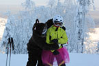 Губаха | gubakha 2012 2013 0469.jpg | ГЛЦ Губаха - сезон 2012-2013 | Горнолыжный центр Губаха горные лыжи сноуборд Город Губаха Фото
