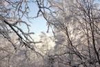 Губаха | gubakha 2012 2013 1161.jpg | ГЛЦ Губаха - сезон 2012-2013 | Горнолыжный центр Губаха горные лыжи сноуборд Город Губаха Фото