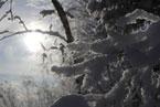 Губаха | gubakha 2012 2013 1187.jpg | ГЛЦ Губаха - сезон 2012-2013 | Горнолыжный центр Губаха горные лыжи сноуборд Город Губаха Фото