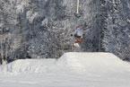 Губаха | gubakha 2012 2013 1198.jpg | ГЛЦ Губаха - сезон 2012-2013 | Горнолыжный центр Губаха горные лыжи сноуборд Город Губаха Фото