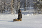 Губаха | gubakha 2012 2013 1223.jpg | ГЛЦ Губаха - сезон 2012-2013 | Горнолыжный центр Губаха горные лыжи сноуборд Город Губаха Фото
