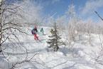 Губаха | gubakha 2012 2013 1441.jpg | ГЛЦ Губаха - сезон 2012-2013 | Горнолыжный центр Губаха горные лыжи сноуборд Город Губаха Фото