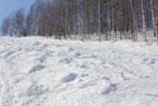 Губаха | gubakha 2012 2013 1683.jpg | ГЛЦ Губаха - сезон 2012-2013 | Горнолыжный центр Губаха горные лыжи сноуборд Город Губаха Фото