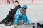 Губаха | gubakha 2012 2013 1769.jpg | ГЛЦ Губаха - сезон 2012-2013 | Горнолыжный центр Губаха горные лыжи сноуборд Город Губаха Фото