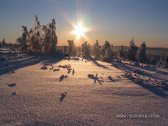 Губаха gora_krestovaya_12.jpg Гора Крестовая - декабрь 2008 Горнолыжный центр Губаха горные лыжи сноуборд Город Губаха Фото