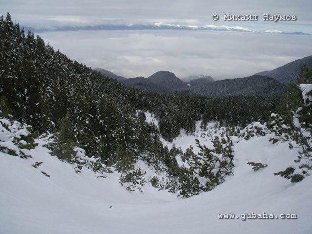 Губаха bansko_mic_nau_2010_20.jpg Банско 2010 Горнолыжный центр Губаха горные лыжи сноуборд Город Губаха Фото