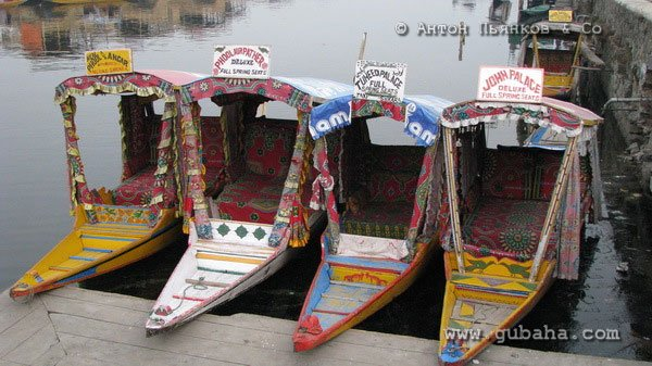 Губаха india39.jpg Гульмарг Индия - январь 2008 Горнолыжный центр Губаха горные лыжи сноуборд Город Губаха Фото