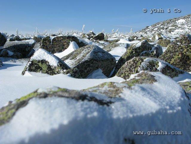 Губаха sheregesh_yosh_037.jpg Шерегеш 2009 Горнолыжный центр Губаха горные лыжи сноуборд Город Губаха Фото