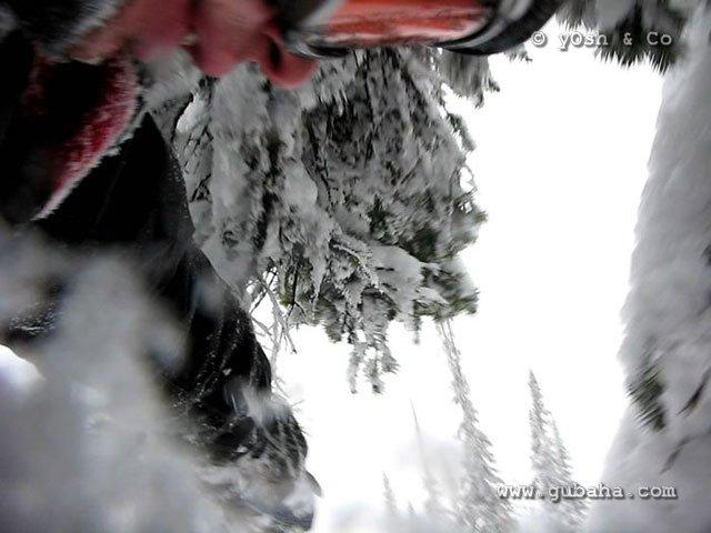 Губаха sheregesh_yosh_049.jpg Шерегеш 2009 Горнолыжный центр Губаха горные лыжи сноуборд Город Губаха Фото