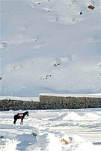 Губаха | foto06.jpg | Узбекистан - январь 2007 | Горнолыжный центр Губаха горные лыжи сноуборд Город Губаха Фото