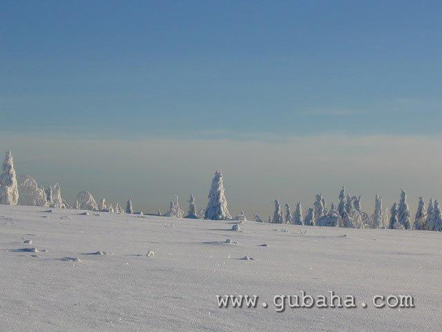 Губаха priroda11.jpg Природа Губахи - зима Горнолыжный центр Губаха горные лыжи сноуборд Город Губаха Фото