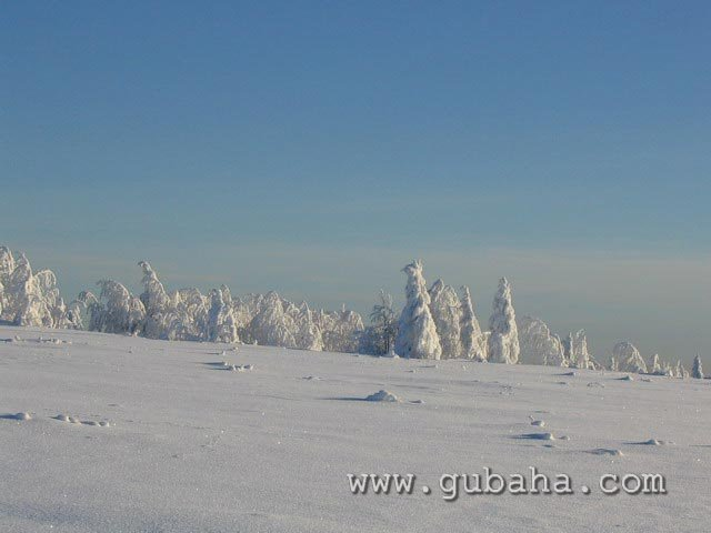 Губаха priroda12.jpg Природа Губахи - зима Горнолыжный центр Губаха горные лыжи сноуборд Город Губаха Фото