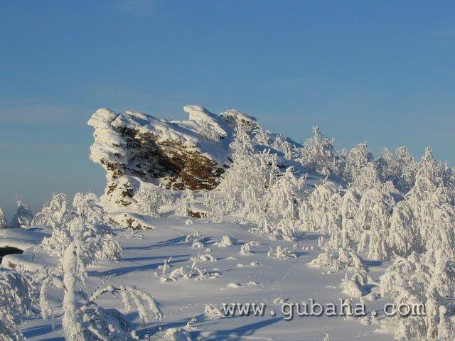 Губаха priroda21.jpg Природа Губахи - зима Горнолыжный центр Губаха горные лыжи сноуборд Город Губаха Фото