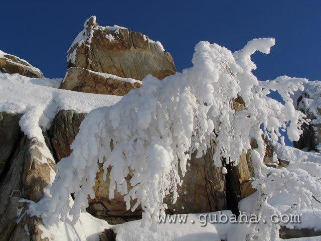 Губаха priroda40.jpg Природа Губахи - зима Горнолыжный центр Губаха горные лыжи сноуборд Город Губаха Фото