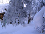 Губаха | 004.jpg | Каменный город - зима | Горнолыжный центр Губаха горные лыжи сноуборд Город Губаха Фото